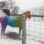 Art Education Student's Work horse statue painted in a rainbow of color